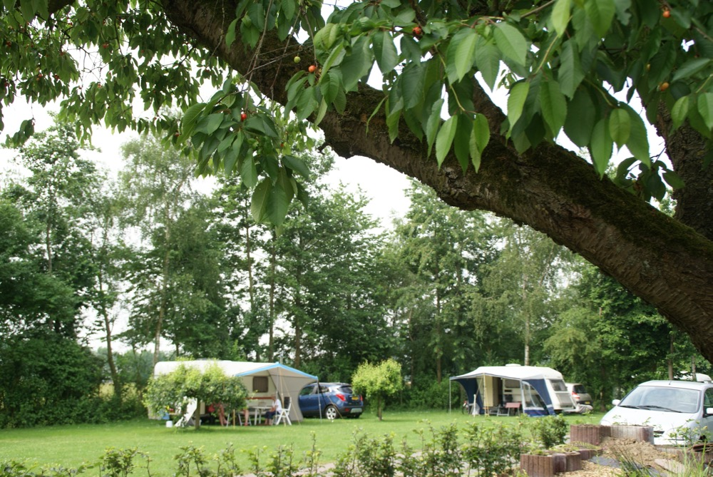 Mini-Camping Het Wielseveld Betuwe Camping 010